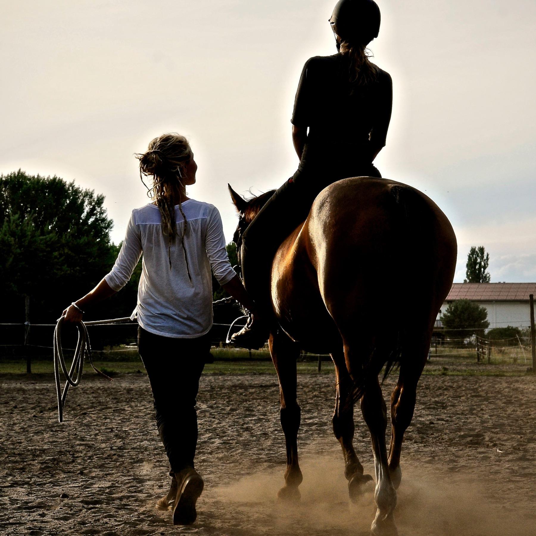 14 Angebot zurück aufs pferd innen 2 Kopie